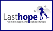 Last Hope Animal Rescue