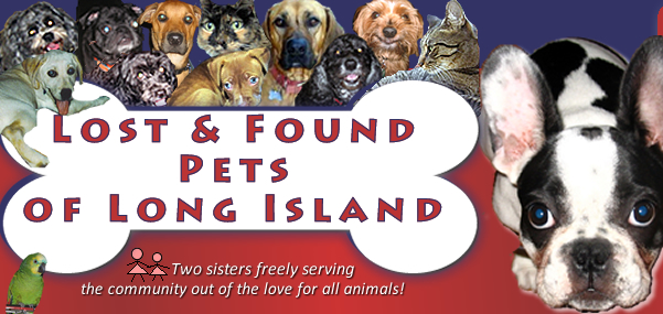 Lost and Found Pets of Long Island -- LAFPOLI